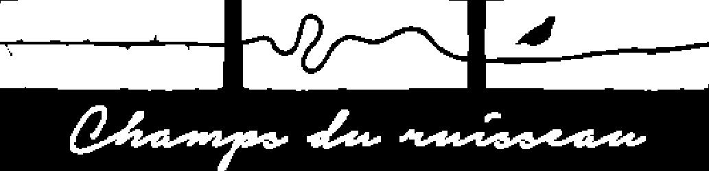 Champs du Ruisseau